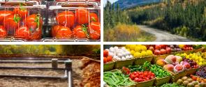 Du nouveau en agriculture, en foresterie et en alimentation.
