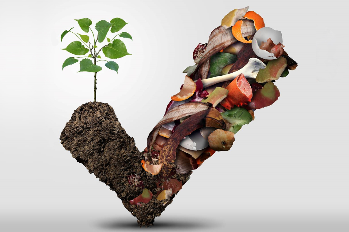 Gestion des matières organiques.