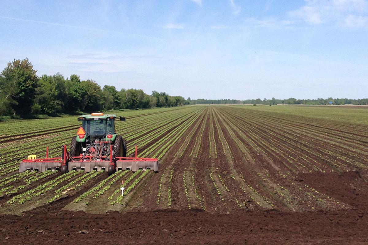 Santé, sécurité et mieux-être en milieu agricole.