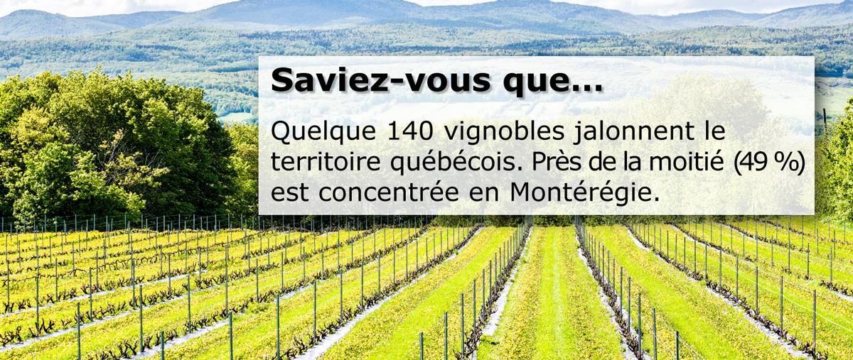 Quelque 140 vignobles jalonnent le territoire québécois et contribuent à la vitalité des régions. Près de la moitié (49 %) sont concentrés en Montérégie.